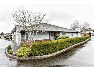 Photo 2: # 21 8889 212ND ST in Langley: Walnut Grove Condo for sale