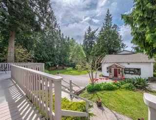 Photo 5: 1249 ROBERTS CREEK ROAD in Sechelt: Roberts Creek House for sale (Sunshine Coast)  : MLS®# R2267068