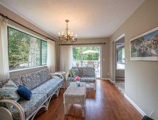 Photo 9: 1249 ROBERTS CREEK ROAD in Sechelt: Roberts Creek House for sale (Sunshine Coast)  : MLS®# R2267068