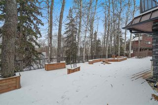 Photo 35: 4 GOULD Place: St. Albert House for sale : MLS®# E4179451