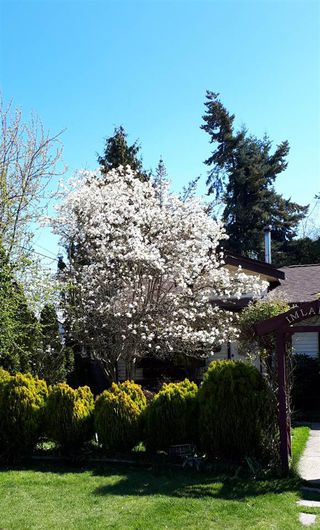 """Photo 20: 1580 LEE Street: White Rock House for sale in """"White Rock"""" (South Surrey White Rock)  : MLS®# R2452357"""
