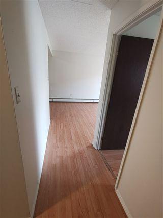 Photo 9: 210 10529 93 Street in Edmonton: Zone 13 Condo for sale : MLS®# E4199197