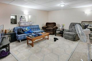 Photo 23: 78 SPRINGWOOD Crescent SE: Airdrie Detached for sale : MLS®# C4305353