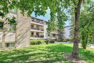 Photo 8: 303 130 25 Avenue SW in Calgary: Mission Apartment for sale : MLS®# A1023034