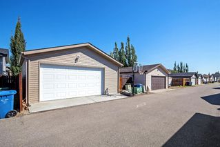 Photo 29: 744 PRESTWICK Circle SE in Calgary: McKenzie Towne Detached for sale : MLS®# A1024986