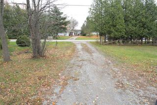 Photo 9: 208 Mcguire Beach Road in Kawartha Lakes: Rural Carden House (Bungalow) for sale : MLS®# X4970159