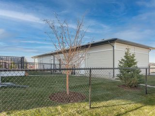 Photo 19: 78 Skyview Parade NE in Calgary: Skyview Ranch Row/Townhouse for sale : MLS®# A1051457