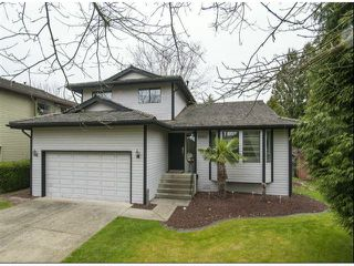 """Photo 1: 16101 12TH Avenue in Surrey: King George Corridor House for sale in """"South Meridian"""" (South Surrey White Rock)  : MLS®# F1307556"""