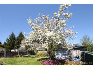 Photo 18: 1222 Alan Rd in VICTORIA: SW Layritz House for sale (Saanich West)  : MLS®# 637712