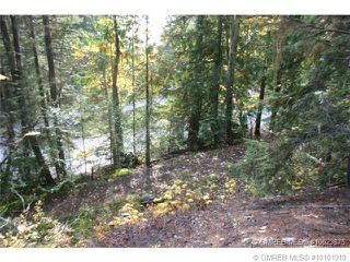 Photo 8: 23 Vickers Trail in Anglemont: Anglemont Estates Vacant Land for sale (North Shuswap)  : MLS®# 10131535