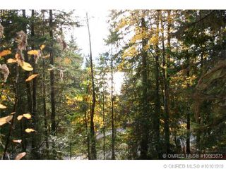 Photo 7: 23 Vickers Trail in Anglemont: Anglemont Estates Vacant Land for sale (North Shuswap)  : MLS®# 10131535