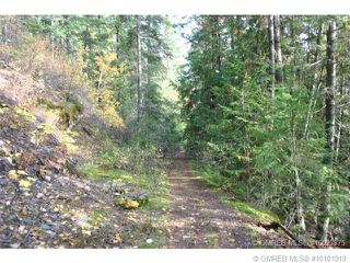 Photo 5: 23 Vickers Trail in Anglemont: Anglemont Estates Vacant Land for sale (North Shuswap)  : MLS®# 10131535