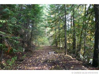Photo 11: 23 Vickers Trail in Anglemont: Anglemont Estates Vacant Land for sale (North Shuswap)  : MLS®# 10131535
