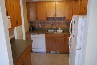 Photo 8: 954 Greencrest Avenue in Winnipeg: Fort Richmond Single Family Detached for sale (South Winnipeg)  : MLS®# 1522121
