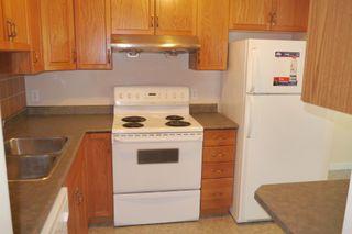 Photo 9: 954 Greencrest Avenue in Winnipeg: Fort Richmond Single Family Detached for sale (South Winnipeg)  : MLS®# 1522121