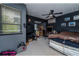 Photo 13: 174 SPRINGFIELD DRIVE in Langley: Aldergrove Langley House for sale : MLS®# R2078707