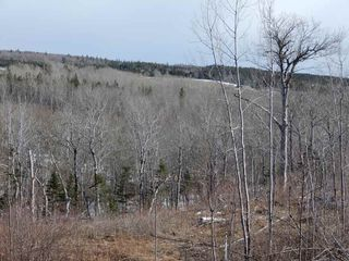Photo 6: West River Station Road in Salt Springs: 108-Rural Pictou County Vacant Land for sale (Northern Region)  : MLS®# 202006078