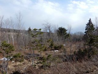 Photo 5: West River Station Road in Salt Springs: 108-Rural Pictou County Vacant Land for sale (Northern Region)  : MLS®# 202006078
