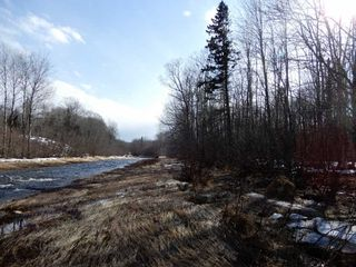 Photo 12: West River Station Road in Salt Springs: 108-Rural Pictou County Vacant Land for sale (Northern Region)  : MLS®# 202006078