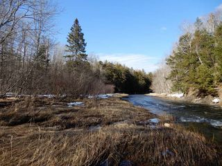 Photo 14: West River Station Road in Salt Springs: 108-Rural Pictou County Vacant Land for sale (Northern Region)  : MLS®# 202006078