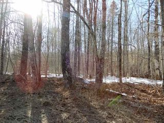 Photo 15: West River Station Road in Salt Springs: 108-Rural Pictou County Vacant Land for sale (Northern Region)  : MLS®# 202006078