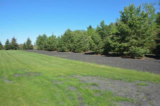 Photo 38: 56103 RGE RD 252: Rural Sturgeon County House for sale : MLS®# E4198624