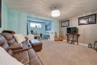 Photo 36: 20 SPRING Link: Spruce Grove House for sale : MLS®# E4213137