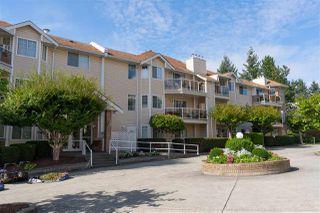 Photo 19: 216 22611 116 Avenue in Maple Ridge: East Central Condo for sale : MLS®# R2496889
