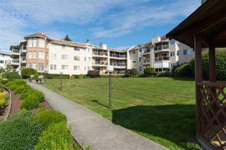 Photo 6: 216 22611 116 Avenue in Maple Ridge: East Central Condo for sale : MLS®# R2496889