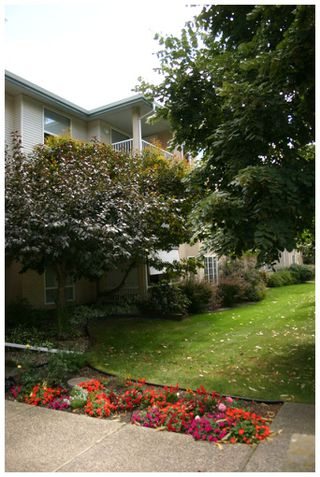 Photo 10: 302 250 Southeast 5 Street in Salmon Arm: Central House for sale : MLS®# 10088442