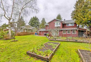 Photo 19: 5256 10A AVENUE in Delta: Tsawwassen Central House for sale (Tsawwassen)  : MLS®# R2030722