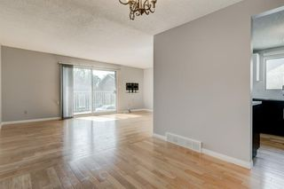 Photo 9: 450 19 Avenue NW in Calgary: Mount Pleasant Semi Detached for sale : MLS®# A1036618