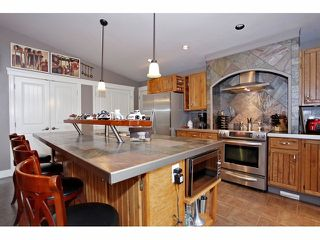 Photo 5: 6908 GLOVER Road in Langley: Salmon River House for sale : MLS®# F1304434