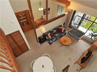 Photo 4: 407 1009 McKenzie Ave in VICTORIA: SE Quadra Condo for sale (Saanich East)  : MLS®# 639350