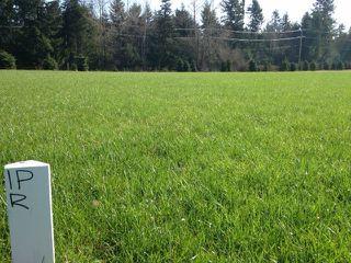 Main Photo: # LT.9 23712 56TH AV in Langley: Salmon River Home for sale : MLS®# F1407732