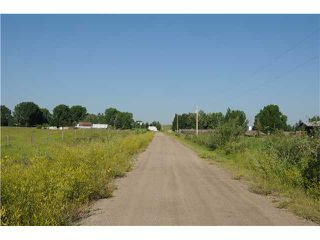 Photo 6: 262034 80 St E in DE WINTON: Rural Foothills M.D. Rural Land for sale : MLS®# C3631915