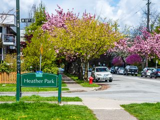 Photo 8: 207 3353 Heather Street in Vancouver: Cambie Condo for sale (Vancouver West)  : MLS®# V1060929