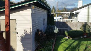 Photo 13: 14165 109 AVENUE in Surrey: Bolivar Heights 1/2 Duplex for sale (North Surrey)  : MLS®# R2032562