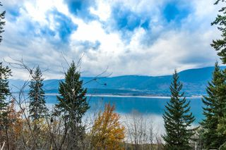 Photo 92: 5000 Northeast 11 Street in Salmon Arm: Raven House for sale (NE Salmon Arm)  : MLS®# 10131721