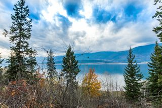 Photo 93: 5000 Northeast 11 Street in Salmon Arm: Raven House for sale (NE Salmon Arm)  : MLS®# 10131721