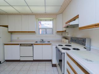 Photo 7: 161 Regina Avenue in Toronto: Englemount-Lawrence Freehold for sale (Toronto C04)
