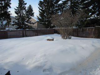 Photo 23: 21 Aspen Crescent in St. Albert: House for rent