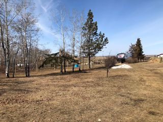 Photo 16: Pt SE 17-45-7-W4 in MD of Wainwright: Wainwright Rural House with Acreage for sale : MLS®# 63893