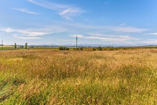 Photo 33: 96247 402 Avenue W: Rural Foothills County Detached for sale : MLS®# C4265642