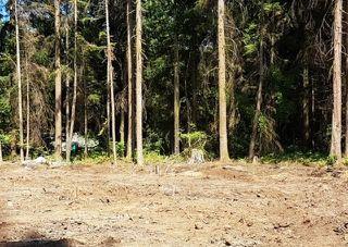 Photo 6: 27608 112 Avenue in Maple Ridge: Whonnock Land for sale : MLS®# R2408605
