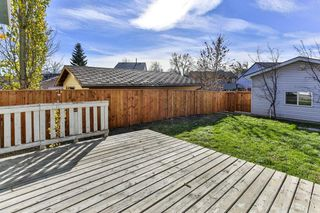 Photo 25: 47 TEMPLEGREEN Place NE in Calgary: Temple Detached for sale : MLS®# C4273952