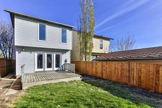 Photo 27: 47 TEMPLEGREEN Place NE in Calgary: Temple Detached for sale : MLS®# C4273952