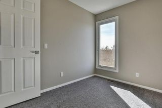 Photo 19: 47 TEMPLEGREEN Place NE in Calgary: Temple Detached for sale : MLS®# C4273952
