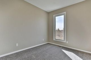 Photo 21: 47 TEMPLEGREEN Place NE in Calgary: Temple Detached for sale : MLS®# C4273952