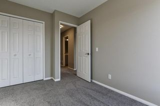 Photo 20: 47 TEMPLEGREEN Place NE in Calgary: Temple Detached for sale : MLS®# C4273952